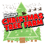 Hurleys Christmas Farm